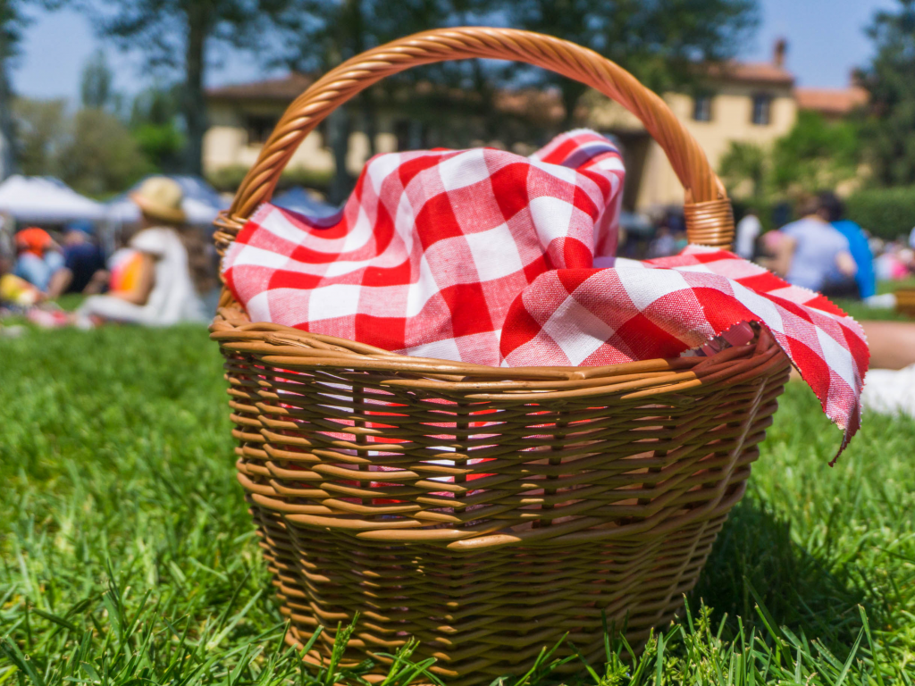 Close up of a picnic basket on grass with a red and white checkered blanket inside